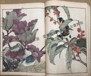 景年花鳥画譜 (3)