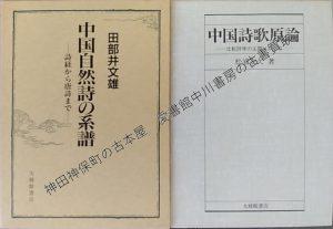 中国自然詩の系譜、中国詩歌原論